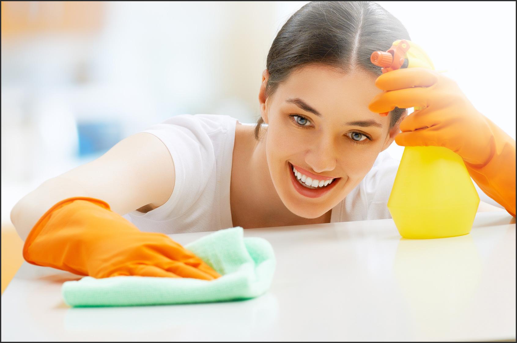 junge Frau reinigt mit Mikrofasertuch und Reinigungsmittel von WTI.